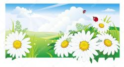 Camomile clipart summer