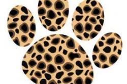 Leopard Skin clipart paw