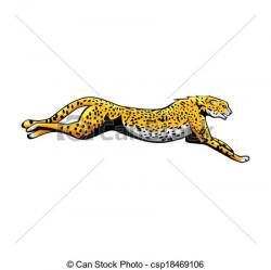 Cheetah clipart real