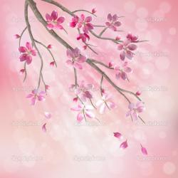 Cherry Blossom clipart plum flower