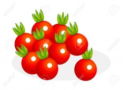 Tomato clipart cherry tomato