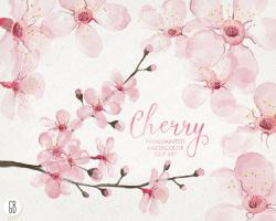 Cherry Blossom clipart invitation