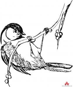 Chickadee clipart Chickadee Silhouette