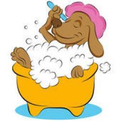 Chihuahua clipart bath