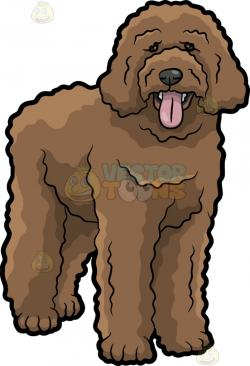 Goldendoodle clipart Cute Dog Clipart