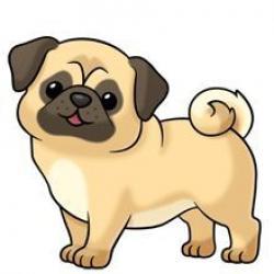 Drawn pug