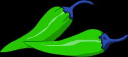 Chili clipart green capsicum