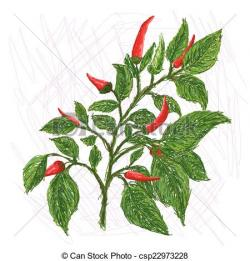 Chili clipart leaves