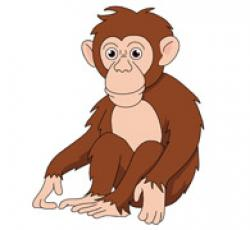 Chimpanzee clipart
