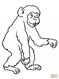 Bonobo clipart black and white