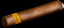 Cuba clipart cigar