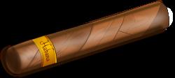 Tobacco clipart cigar