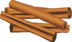 Cinnamon clipart