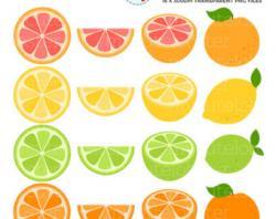 Fruits & Vegetables clipart grape fruit