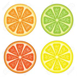 Grapefruit clipart lemon orange lime