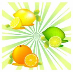 Tangerine clipart