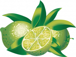Citrus clipart healthy fruit