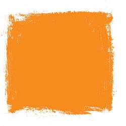 Citrus clipart orange color