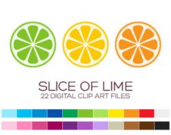 Lime clipart lime slice