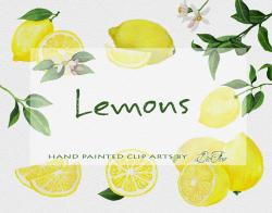 Citrus clipart yellow fruit
