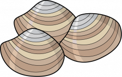 Seafood clipart clam