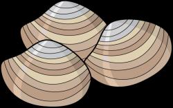 Clams clipart