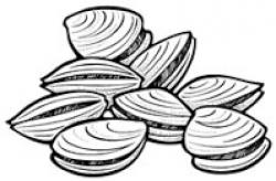 Clams clipart clambake