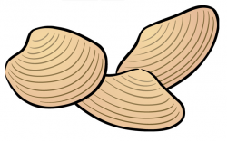 Mussel clipart success kid