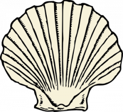 Mussels clipart clam shell