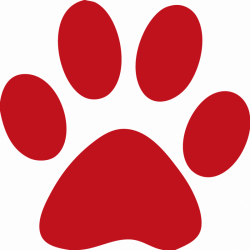 Paw clipart bengal