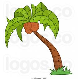 Coconut clipart animated