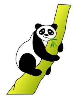 Panda clipart bamboo tree