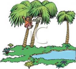 Climbing Tree clipart boy