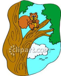 Climbing Tree clipart squirrel