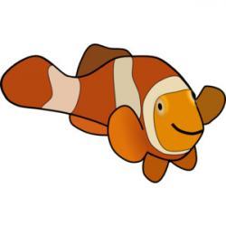 Clownfish clipart orange things