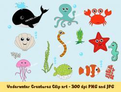 Clownfish clipart underwate animal