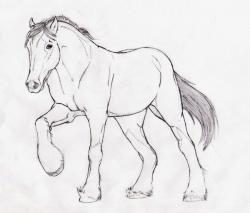 Drawn farm animals clydesdale horse