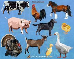Herd clipart be careful