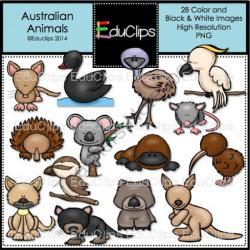 Platypus clipart australian animal