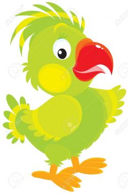 Cockatoo clipart cartoon
