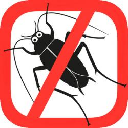 Cockroach clipart anti