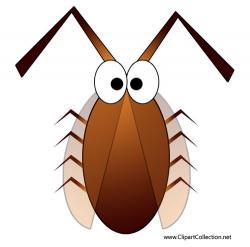 Cockroach clipart cartoon