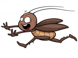 Cockroach clipart funny