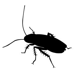 Cockroach clipart silhouette