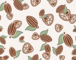 Cocoa Bean clipart dry bean