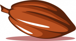 Cocoa Bean clipart single