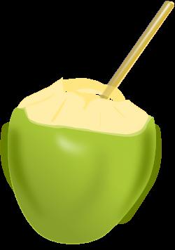 Coconut clipart coconut fruit