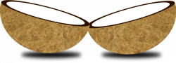 Coconut clipart cut