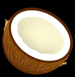 Coconut clipart half