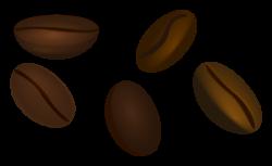 Beans clipart bean seed